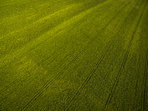 Farmland from above Royalty Free Stock Images