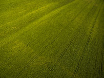 Farmland from above - aerial image of a lush green filed Stock Images