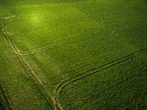 Farmland from above - aerial image Stock Images