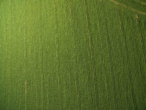 Farmland from above - aerial image Royalty Free Stock Photo