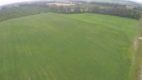 Farmland from above - aerial image of a lush green filed.  stock video footage