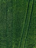 Farmland from above - aerial view of a lush green filed in summer. In rural Finland Royalty Free Stock Photography