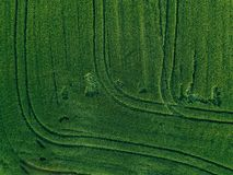 Farmland from above - aerial view of a lush green filed in summer. In rural Finland Royalty Free Stock Image
