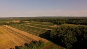 Farmland Aerial. V7 Flying low over farmland panning stock footage