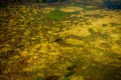 Farmland aerial view at autumn. Farmland aerial view at fall Royalty Free Stock Photography