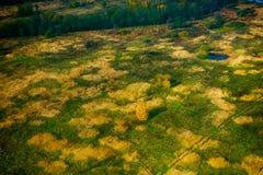 Farmland aerial view at autumn Royalty Free Stock Image