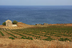 Farmland along the coast Stock Photos
