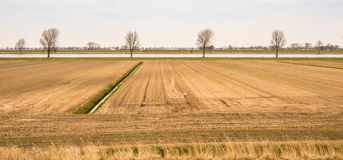 Farmland along the river during a dry spring period. Stock Images