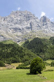 Farmland in the Alps in Switzerland Royalty Free Stock Images