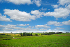 Farmland And Clouds Stock Photo