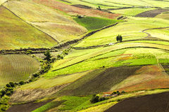 Farmland In Andes Stock Photography