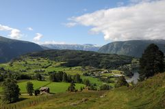 Farmland around Hardangerfjord, Norway Royalty Free Stock Image