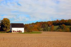 Farmland In Autumn Stock Images
