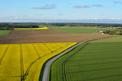 Farmland with blooming Canola, Campestris L during Spring, Aerial view Stock Photography