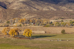 Farmland at Colorado foothills Royalty Free Stock Photo