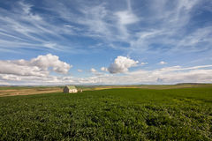 Farmland cottage Stock Image
