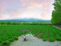 Farmland countryside Royalty Free Stock Image
