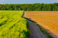 Farmland cultivated in spring. Rural scenery. Agriculture concept stock image