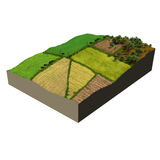 Farmland 3d model ecosystem Stock Photography