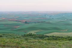 Farmland. In early morning, Steptoe Butte State Park, Oakesdale, Washington Royalty Free Stock Images