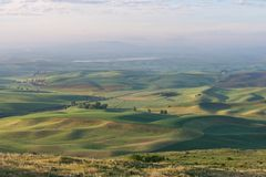 Farmland. In early morning, Steptoe Butte State Park, Oakesdale, Washington Royalty Free Stock Photo