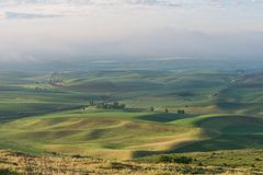Farmland. In early morning, Steptoe Butte State Park, Oakesdale, Washington Royalty Free Stock Photography