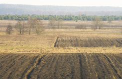 Farmland in early spring Royalty Free Stock Photography