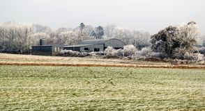 Farmland in early winter royalty free stock image