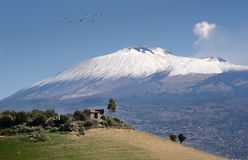 Farmland and Etna Royalty Free Stock Photo