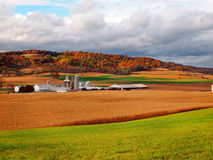 Farmland In Fall stock images