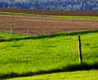 Farmland Fields Dirt Grass Fences Royalty Free Stock Images