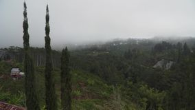 Farmland in the mountains in the cloud. Bali,Indonesia. Farmland, fields with white fog, clouds Bali,Indonesia. Fog, cloud over farmland. Rural mountain stock video footage