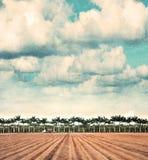 Farmland Stock Image