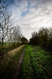 Farmland footpath Royalty Free Stock Photography