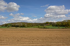 Farmland with forest in the background Royalty Free Stock Images
