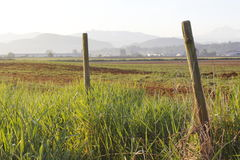 Farmland in the Fraser Valley Royalty Free Stock Photo