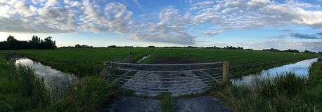 Farmland in Friesland. Panorama farmland landscape in Friesland The Netherlands Stock Photos