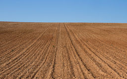 Farmland Furrows Plowed. Knoll freshly plowed farmland and prepared for cultivation Stock Images