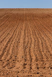 Farmland Furrows Plowed Royalty Free Stock Image
