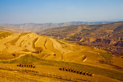 Farmland of gansu china Stock Images