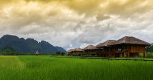 Farmland. With green field and house Nature view Royalty Free Stock Photography