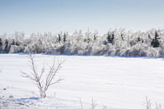Farmland of Ice and Snow Stock Photography