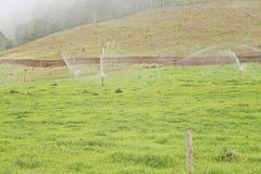 Farmland with irrigation Royalty Free Stock Photos