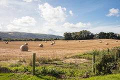 Farmland Isle of Man. Bales of Hay on farmland in the Isle of Man British Isles Stock Images