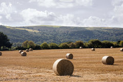 Farmland Isle of Man. Bales of Hay on farmland in the Isle of Man British Isles Royalty Free Stock Photos