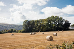 Farmland Isle of Man. Bales of Hay on farmland in the Isle of Man British Isles Royalty Free Stock Photo