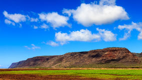 Farmland in Kauai. Farmland near the Napali Coast in Kauai, Hawaii Islands Royalty Free Stock Image