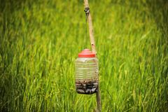 Pest killer at farmland royalty free stock photography