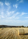 Farmland Landscape Royalty Free Stock Images