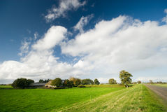 Farmland landscape Stock Images